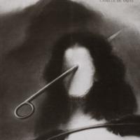 A travers un regard = A través de una mirada / Nemesio Sánchez - Camille De Taeye