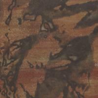 Les champs clos / Catherine Valogne, poèmes - Etienne Hajdu, encres de Chine